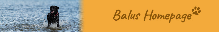 Balus Homepage