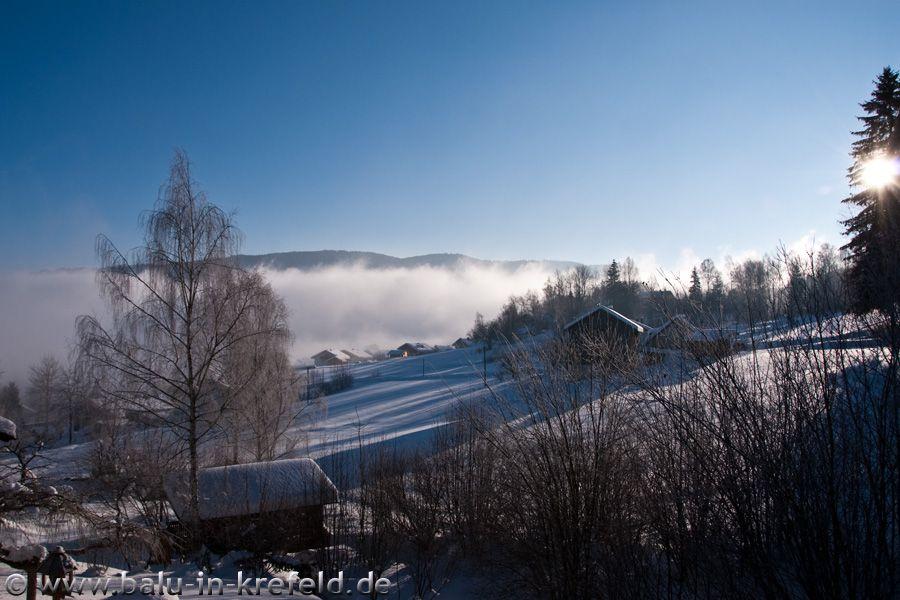 20100207frauenau01