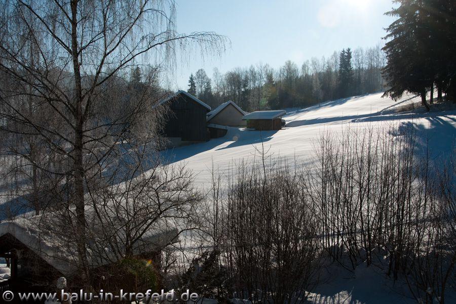 20100207frauenau05