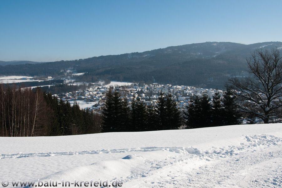 20100207frauenau20