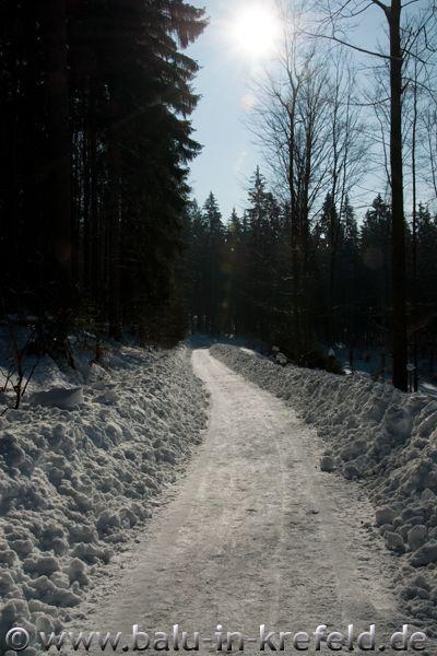 20100208frauenau06
