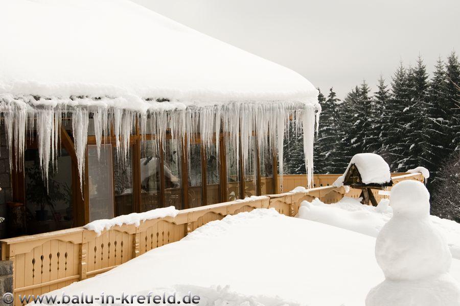 20100209frauenau04