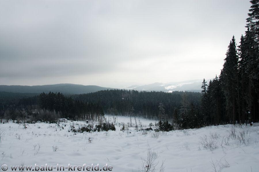 20100209frauenau08