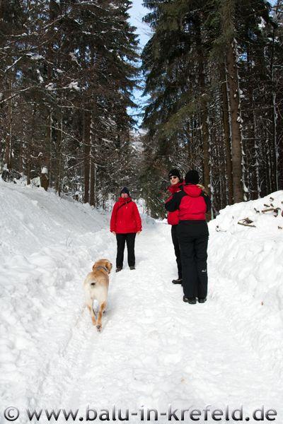 20100209frauenau09