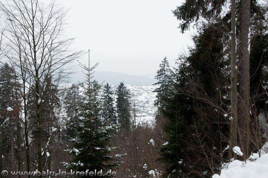 20100209frauenau30