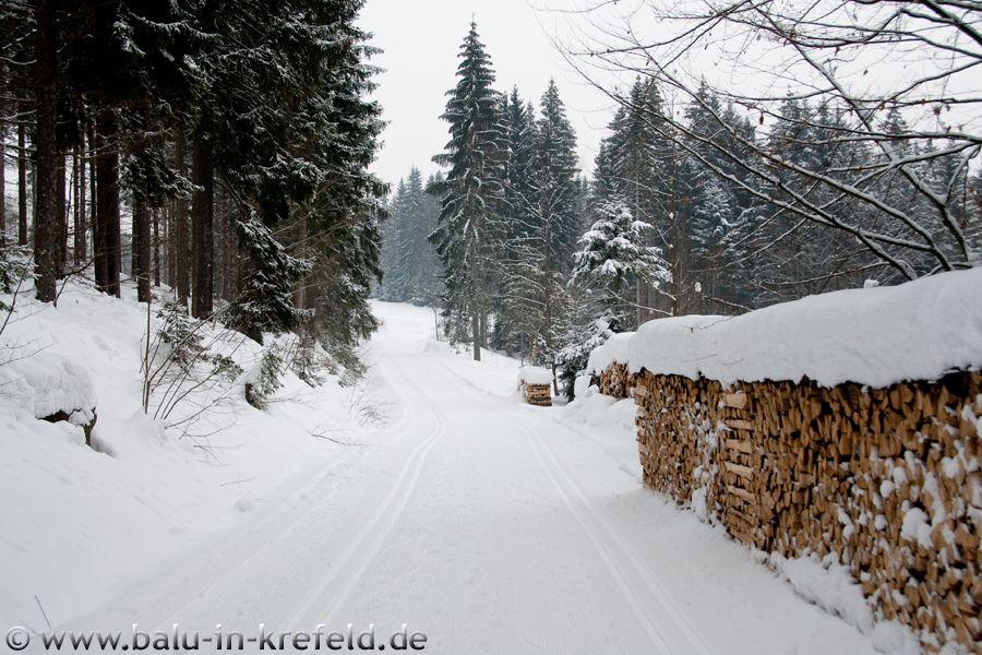 20100211frauenau04