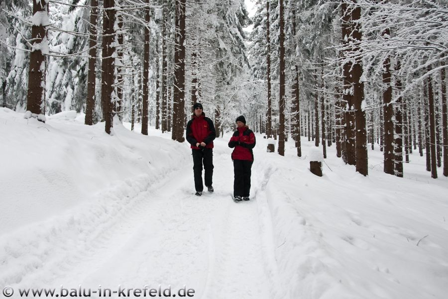20100212frauenau09