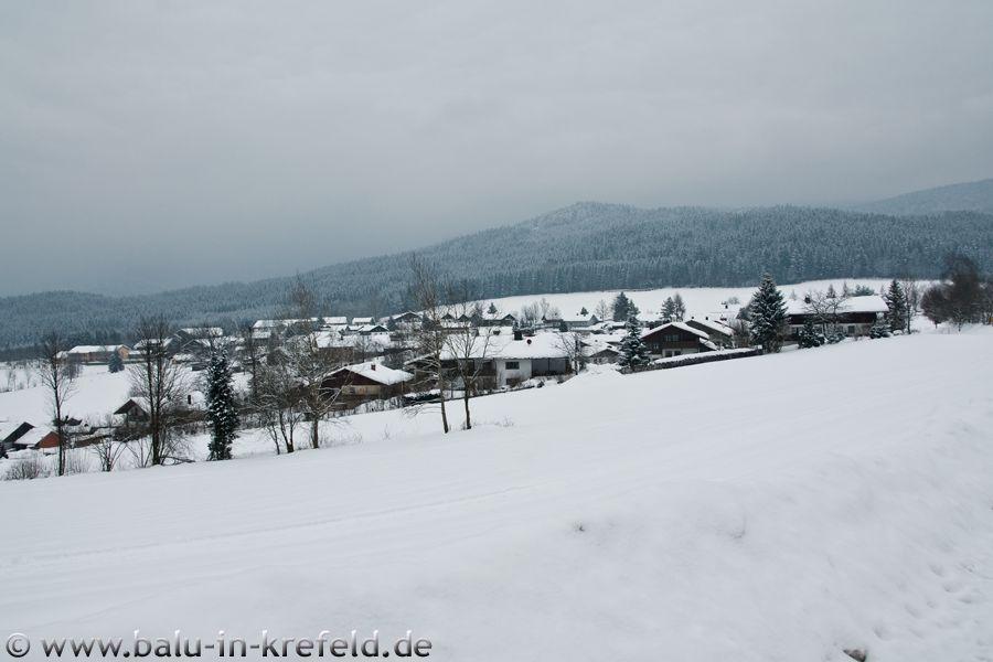 20100212frauenau22