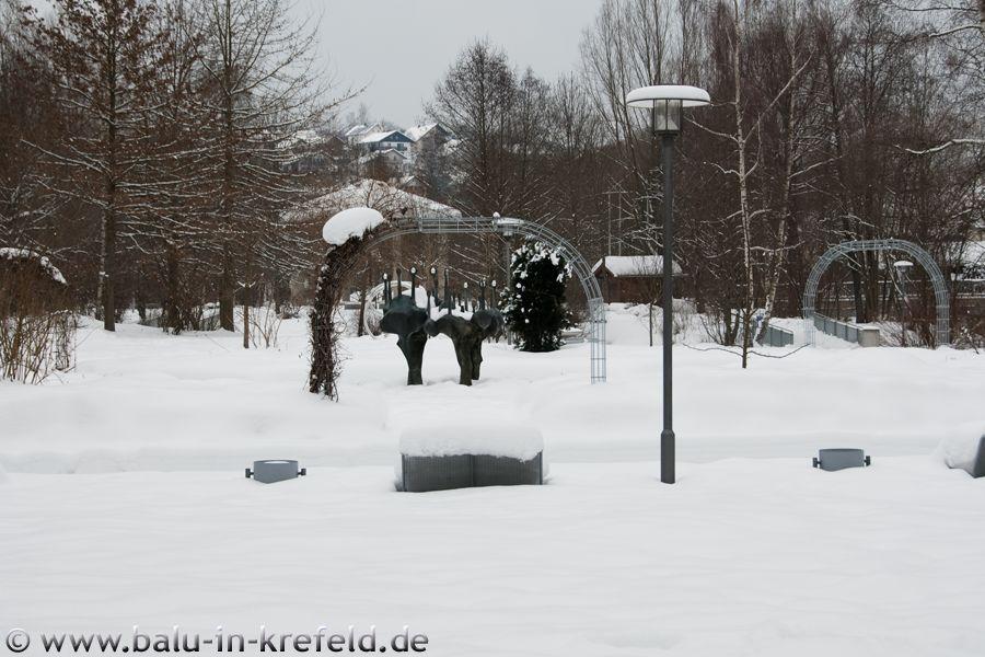 20100214frauenau07