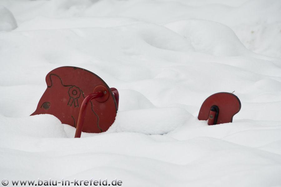 20100214frauenau15