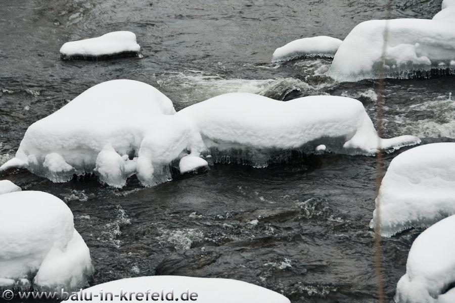 20100214frauenau16