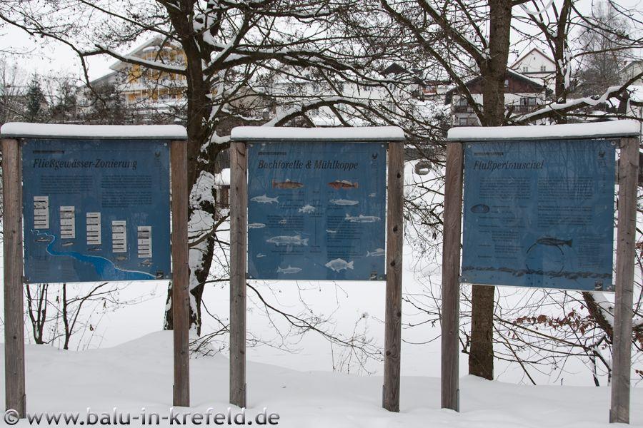 20100214frauenau18