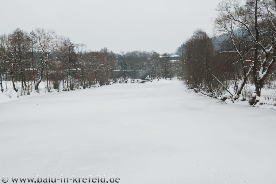 20100214frauenau20