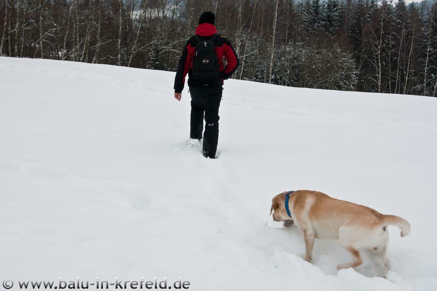 20100215frauenau02 (1)