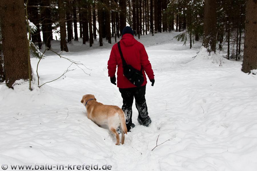 20100215frauenau15