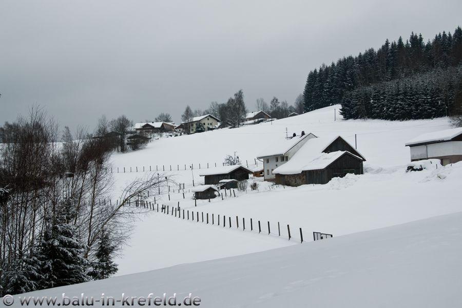 20100215frauenau24