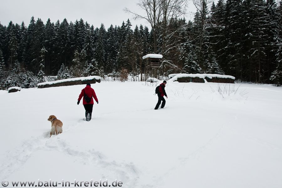 20100215frauenau25