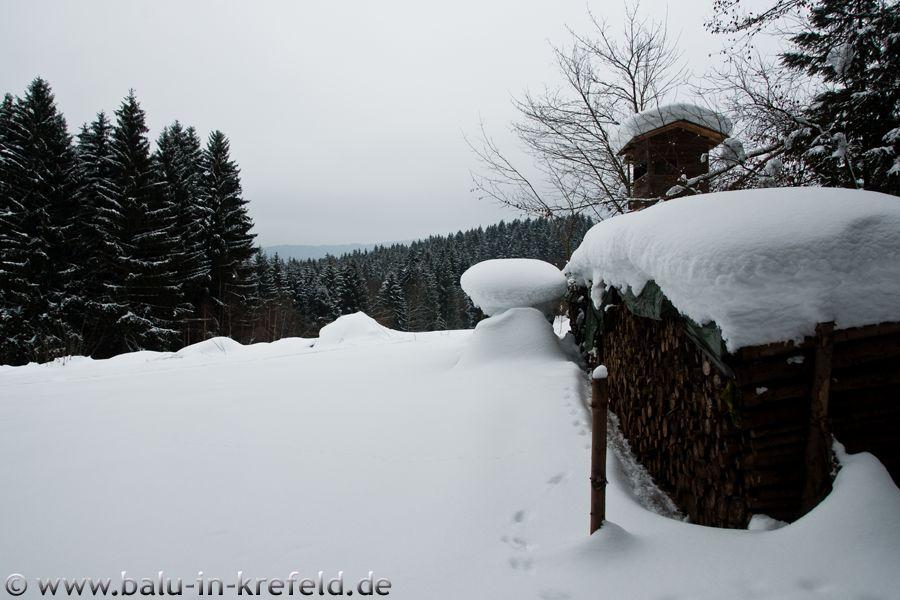 20100215frauenau27