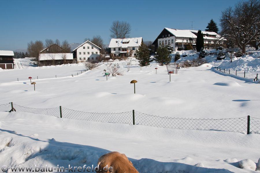20100216frauenau02