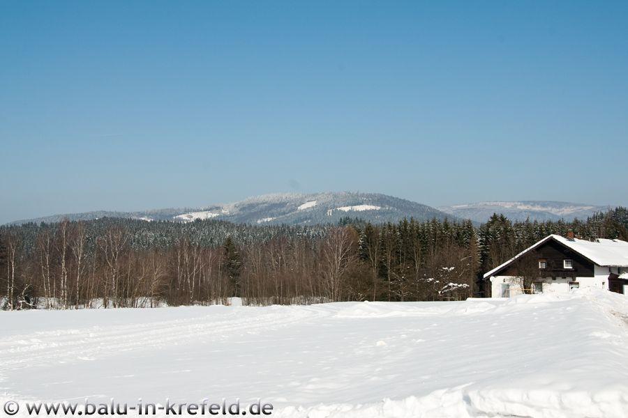 20100216frauenau04