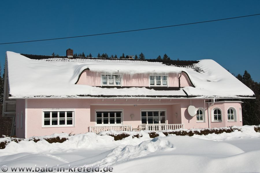 20100216frauenau06