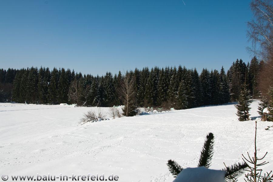 20100216frauenau21