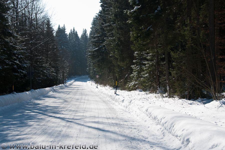 20100216frauenau23