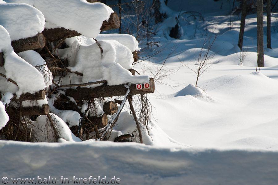 20100216frauenau24