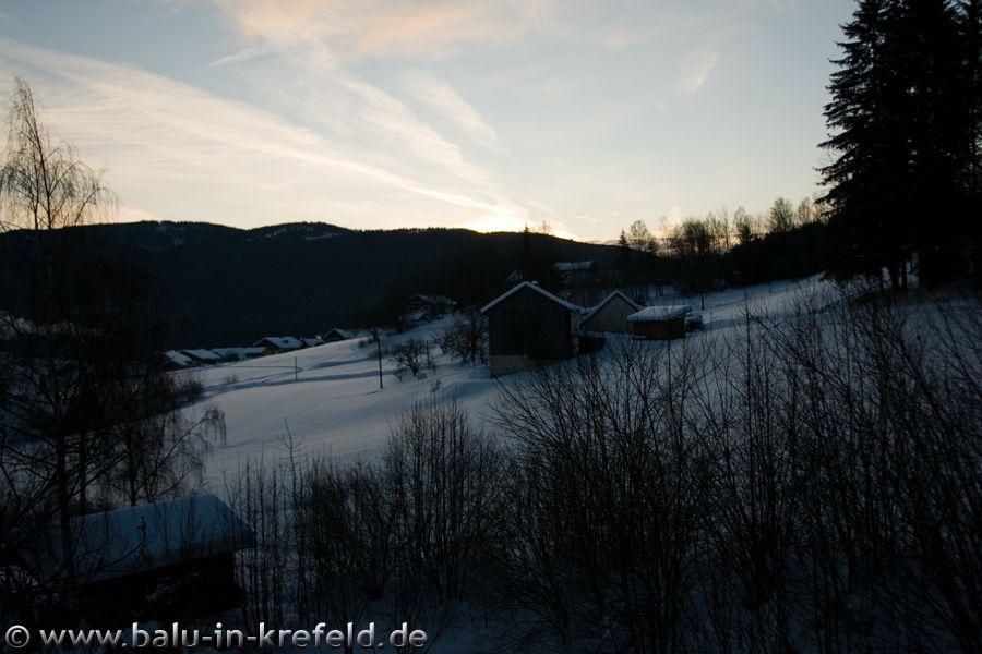 20100217frauenau01