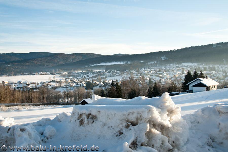 20100217frauenau03