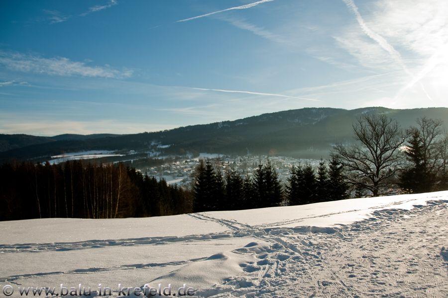 20100217frauenau04