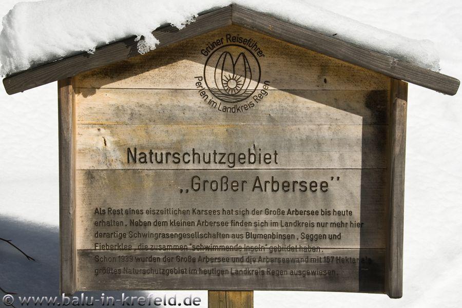 20100217frauenau08