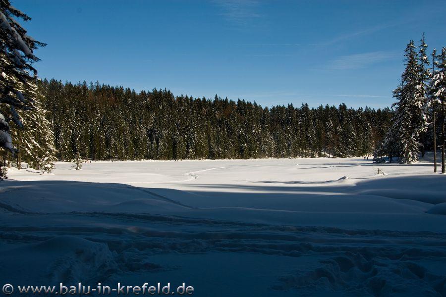 20100217frauenau23