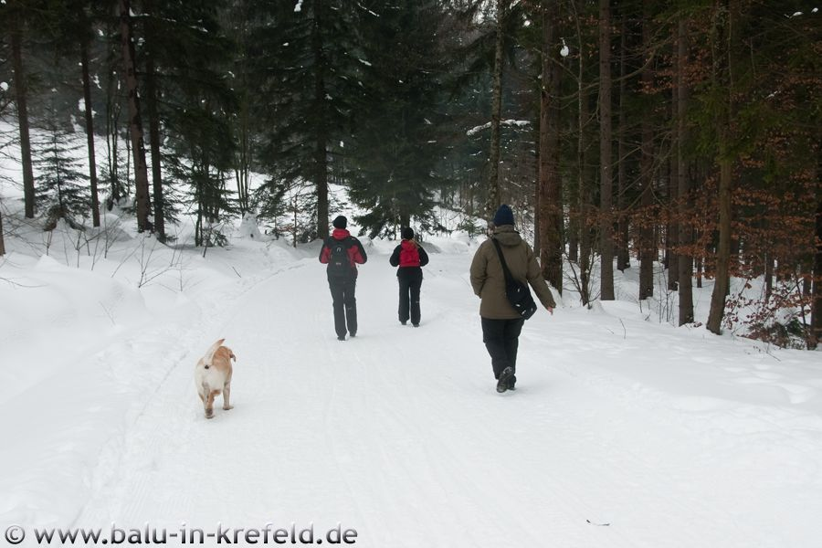 20100218frauenau08