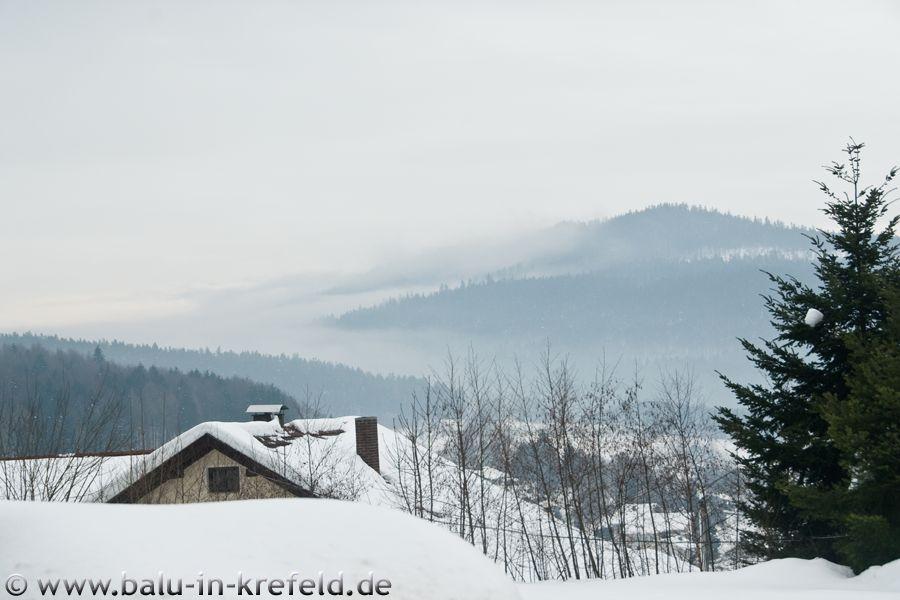 20100218frauenau09